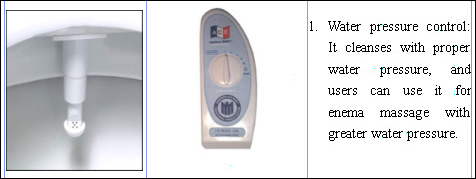 Bidet Features of the Ace HS 1000